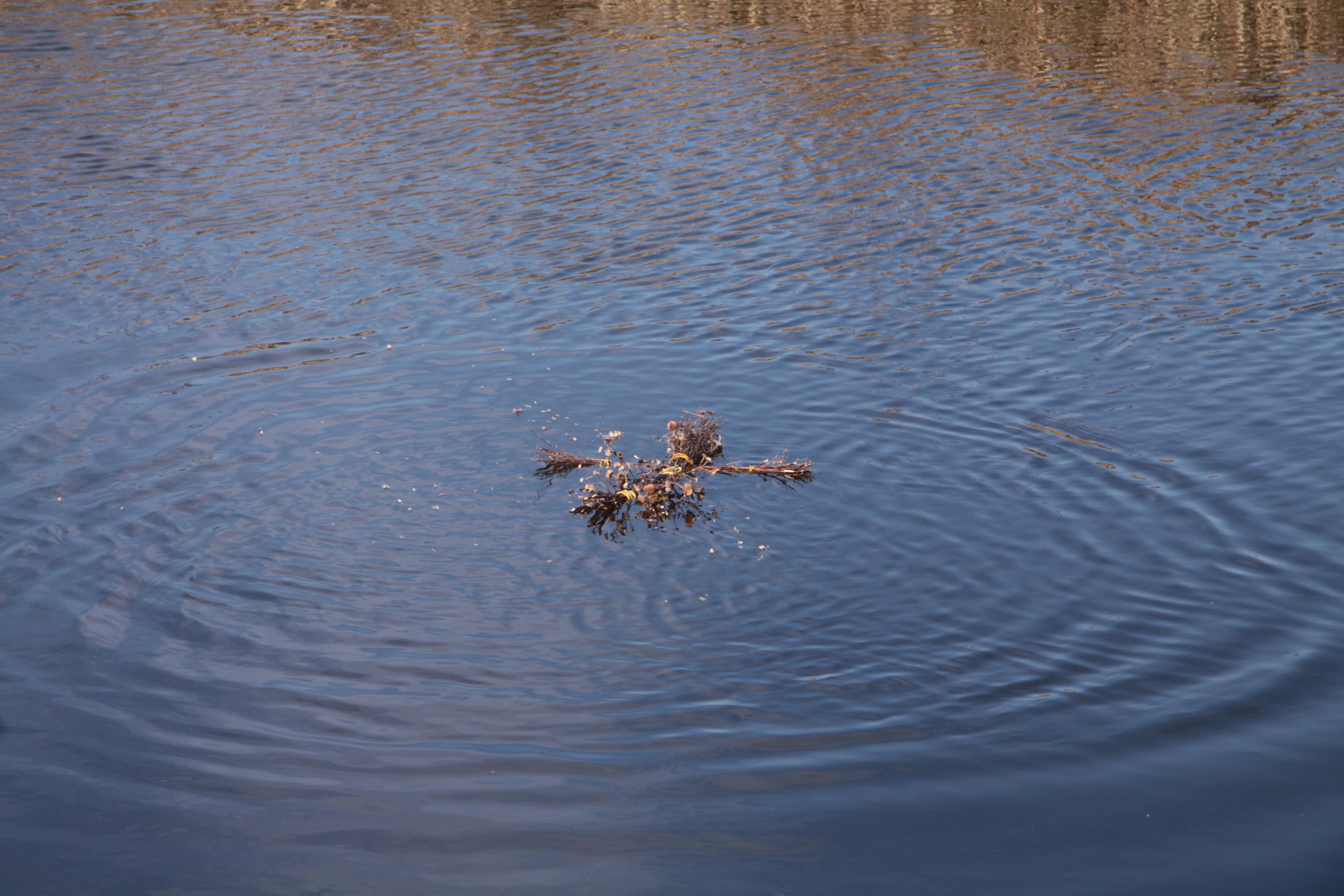 Marzanna płynie Chodelką do morza